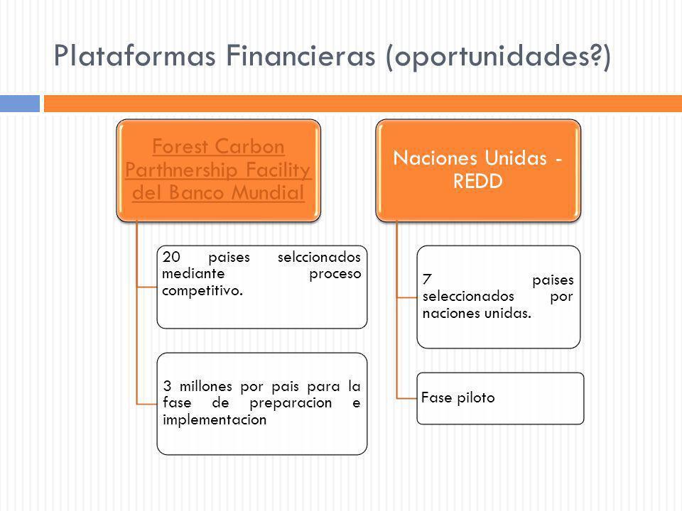 Plataformas Financieras (oportunidades )