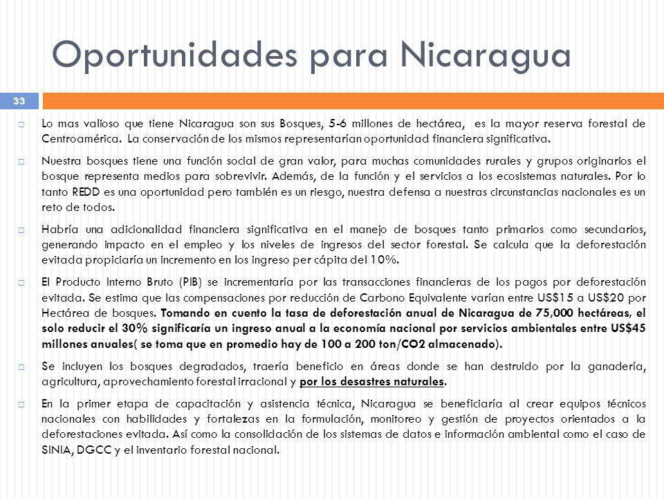 Oportunidades para Nicaragua
