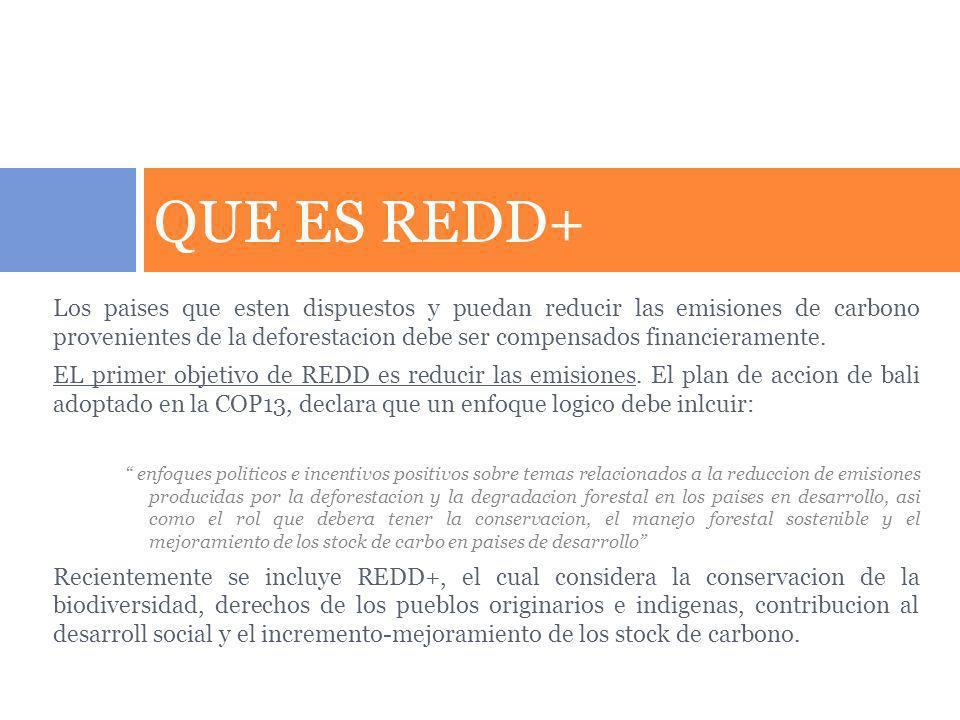 QUE ES REDD+