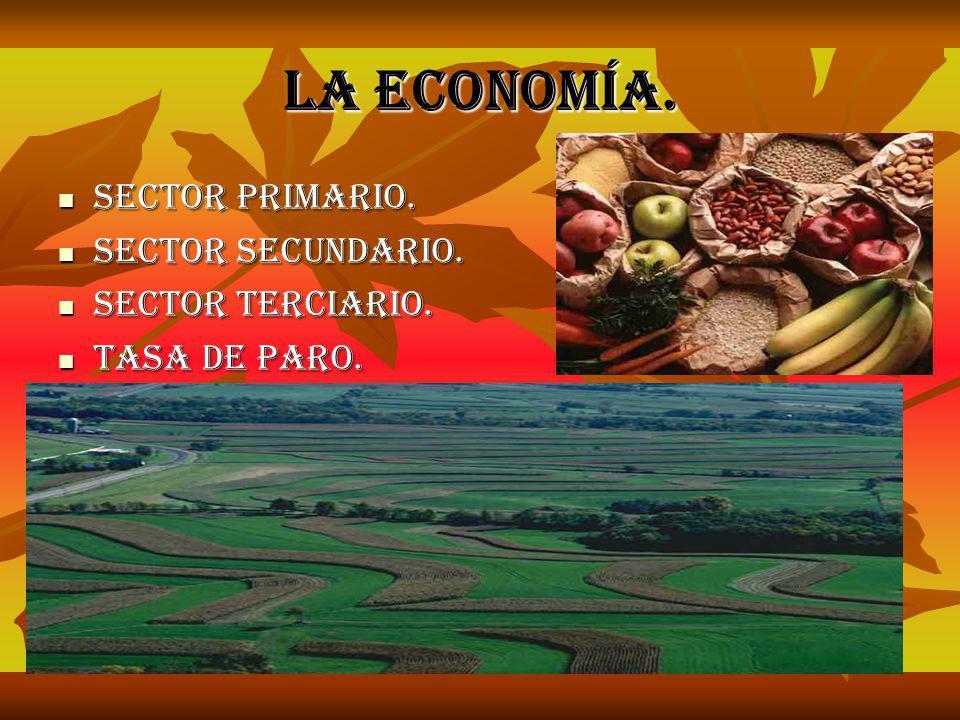 La economía. Sector primario. Sector secundario. Sector terciario.