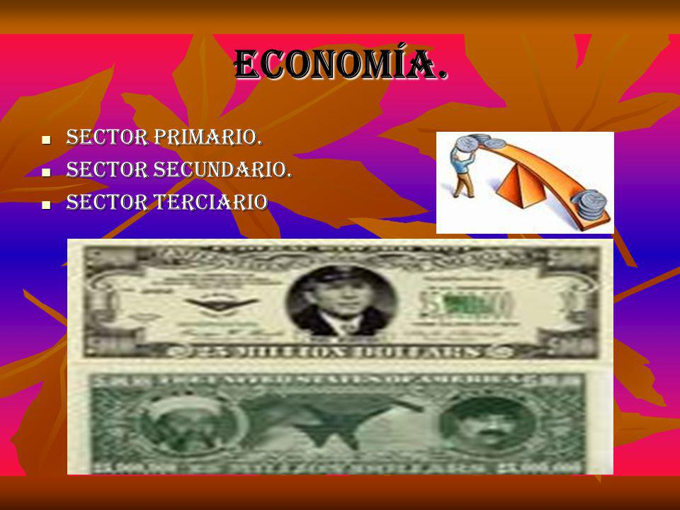 Economía. Sector primario. Sector secundario. Sector terciario