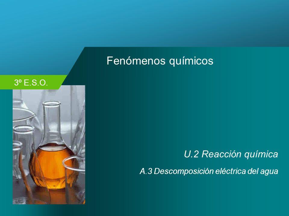 Fenómenos químicos U.2 Reacción química