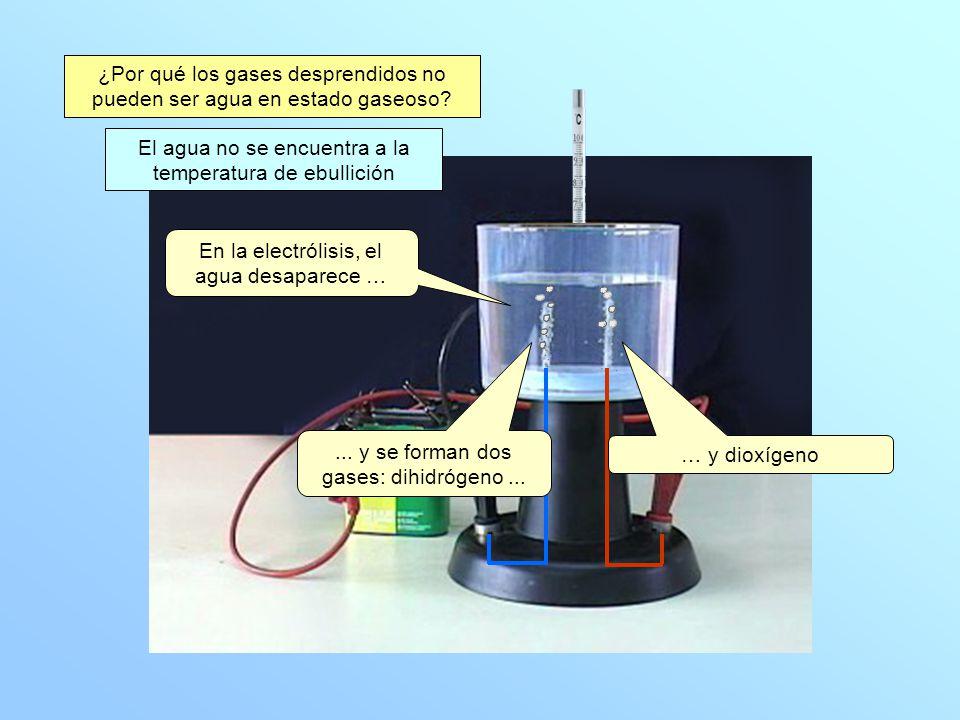 ¿Por qué los gases desprendidos no pueden ser agua en estado gaseoso
