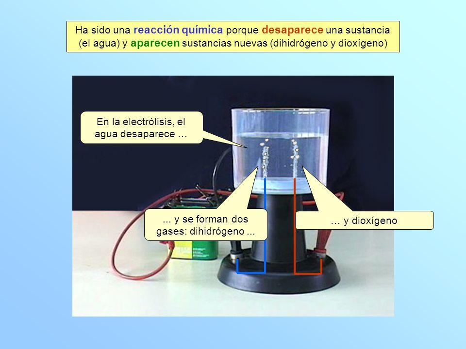 En la electrólisis, el agua desaparece …