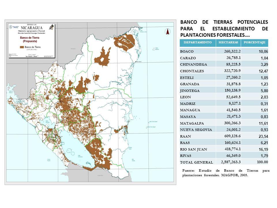 BANCO DE TIERRAS POTENCIALES PARA EL ESTABLECIMIENTO DE PLANTACIONES FORESTALES….