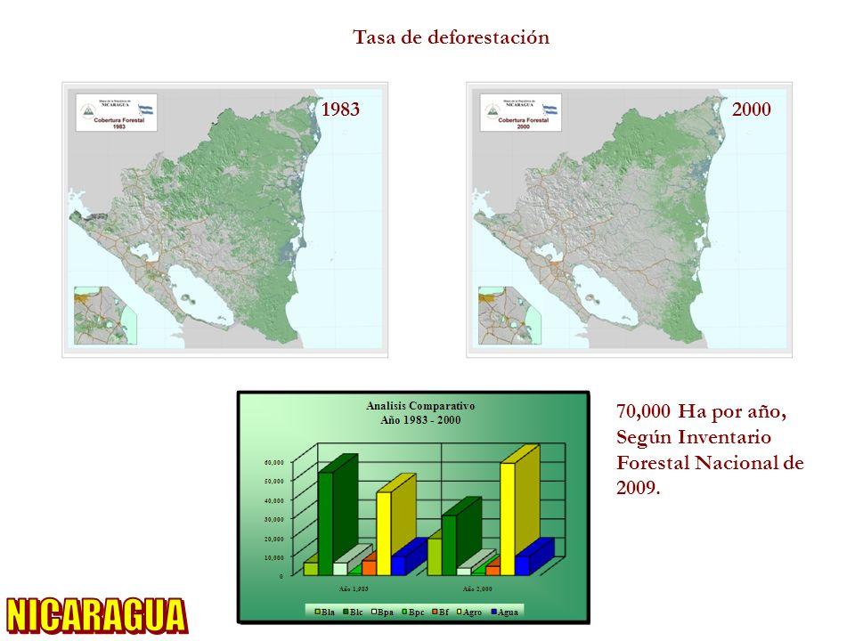 NICARAGUA Tasa de deforestación 1983 2000 70,000 Ha por año,