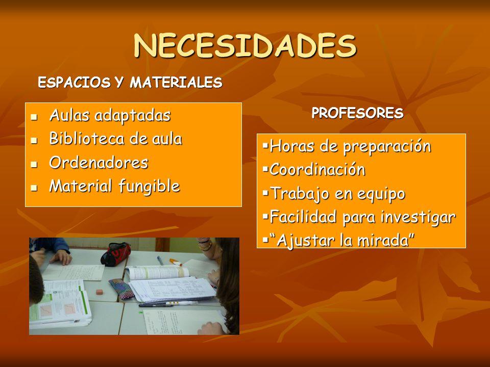 NECESIDADES Aulas adaptadas Biblioteca de aula Ordenadores