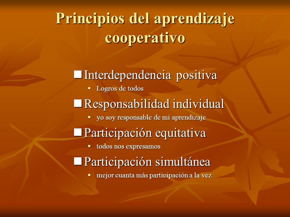 Principios del aprendizaje cooperativo