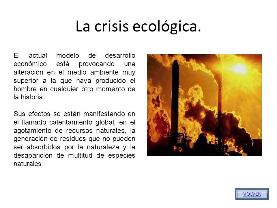 La crisis ecológica.