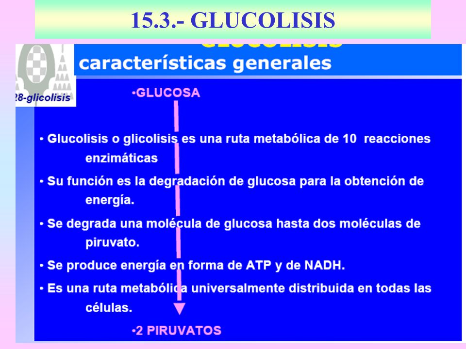 15.3.- GLUCOLISIS