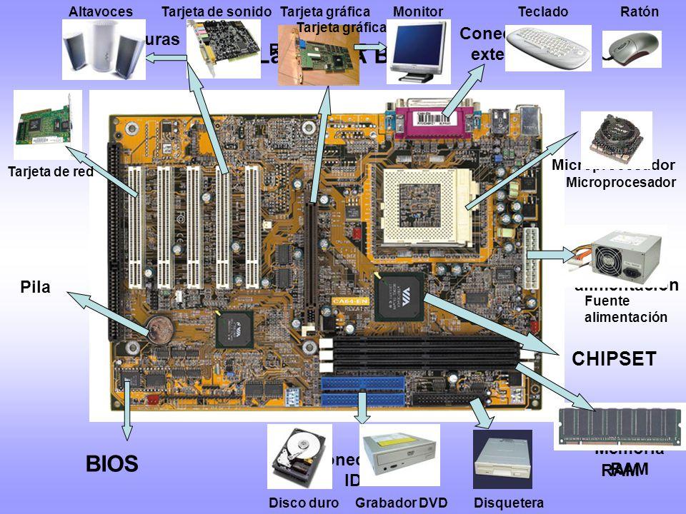 Conectores Memoria RAM