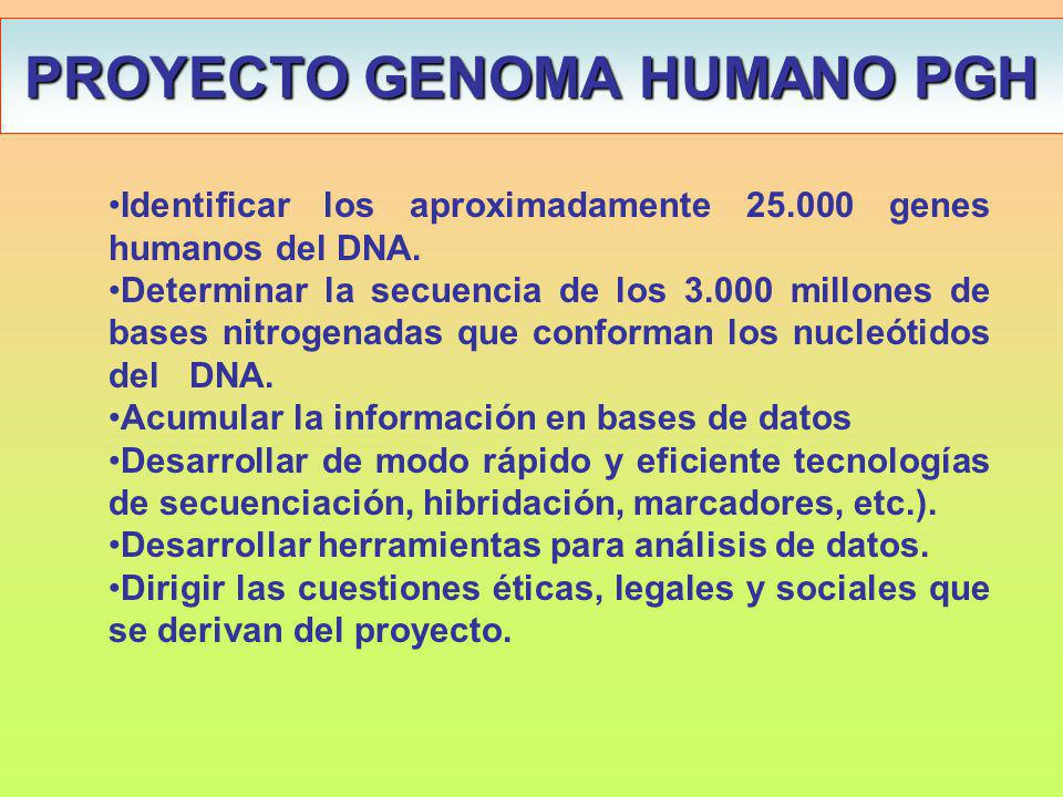 PROYECTO GENOMA HUMANO PGH