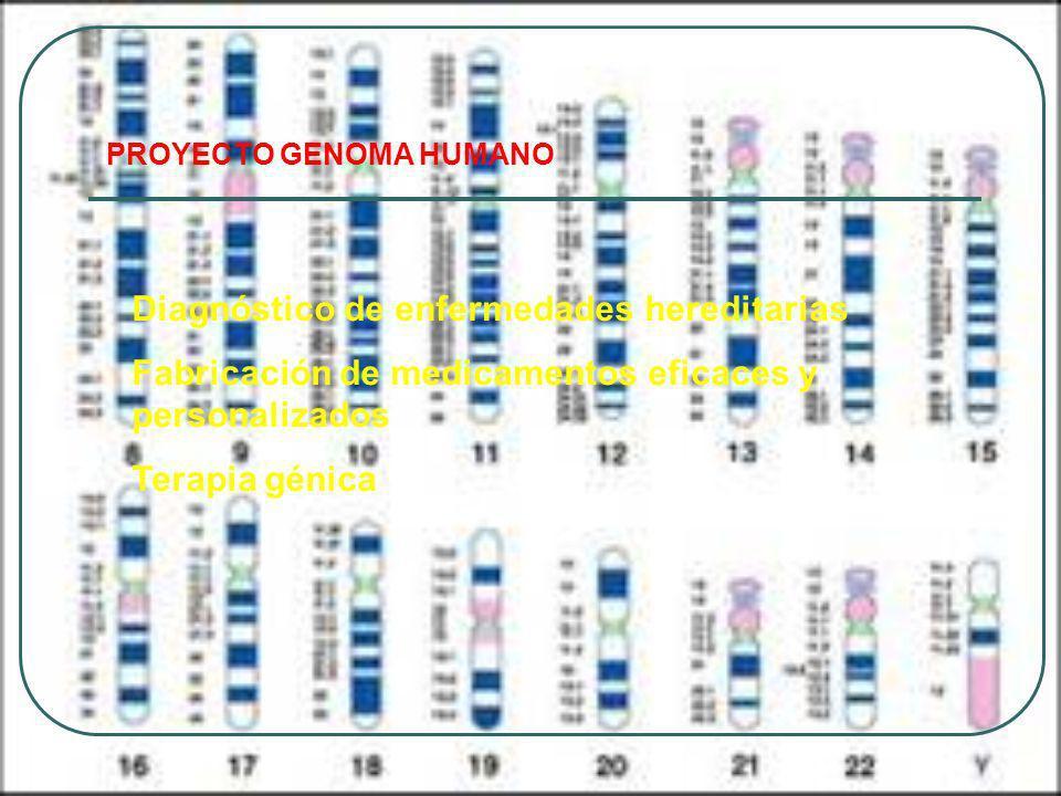 Diagnóstico de enfermedades hereditarias
