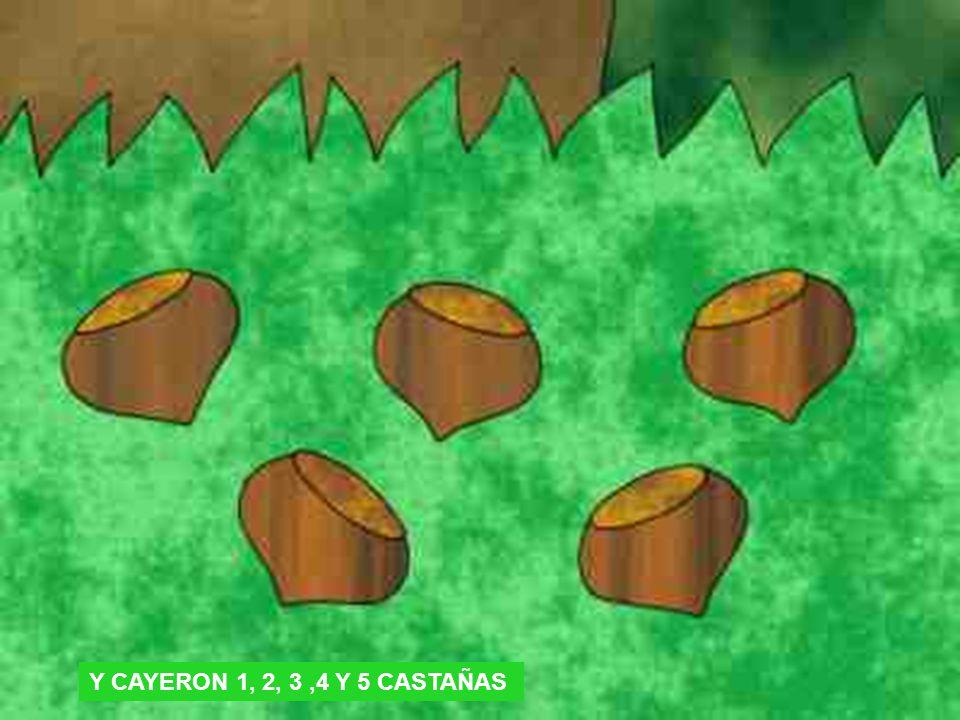 Y CAYERON 1, 2, 3 ,4 Y 5 CASTAÑAS