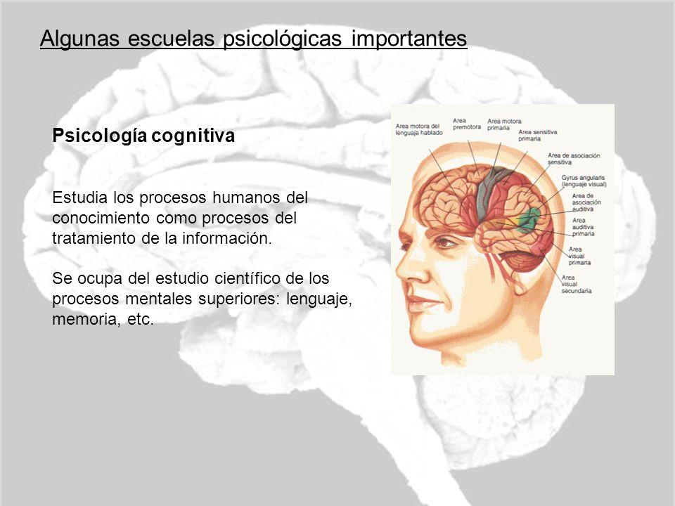 Algunas escuelas psicológicas importantes