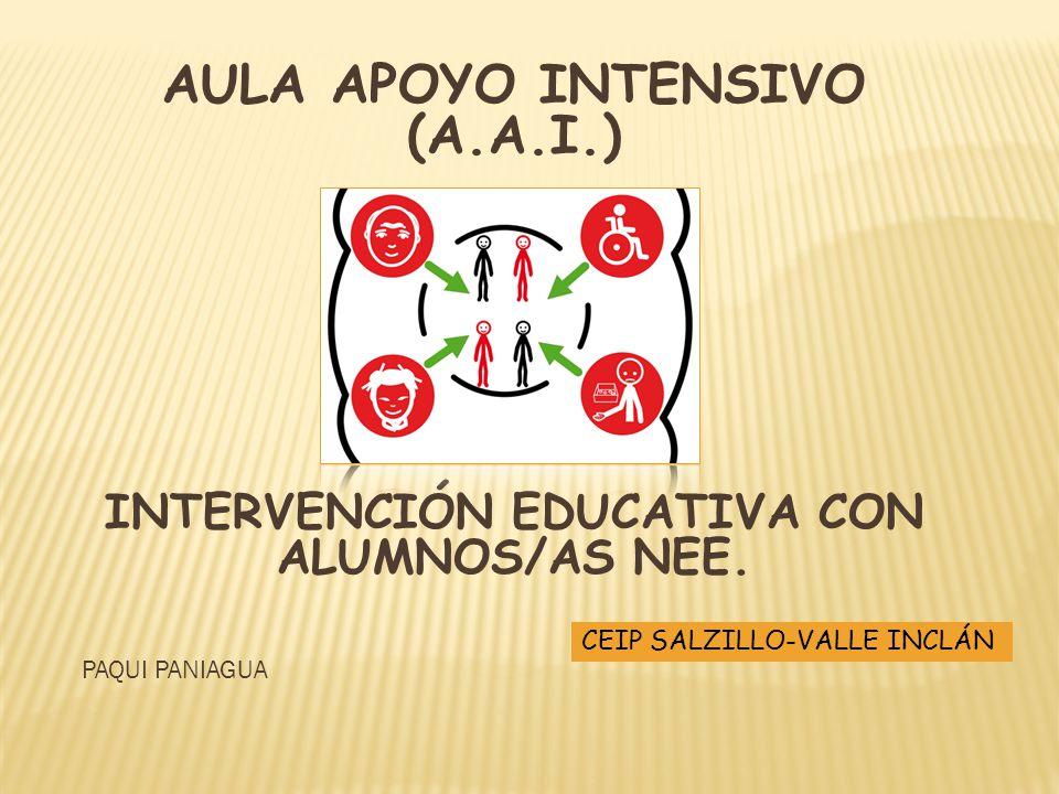 AULA APOYO INTENSIVO (A.A.I.)