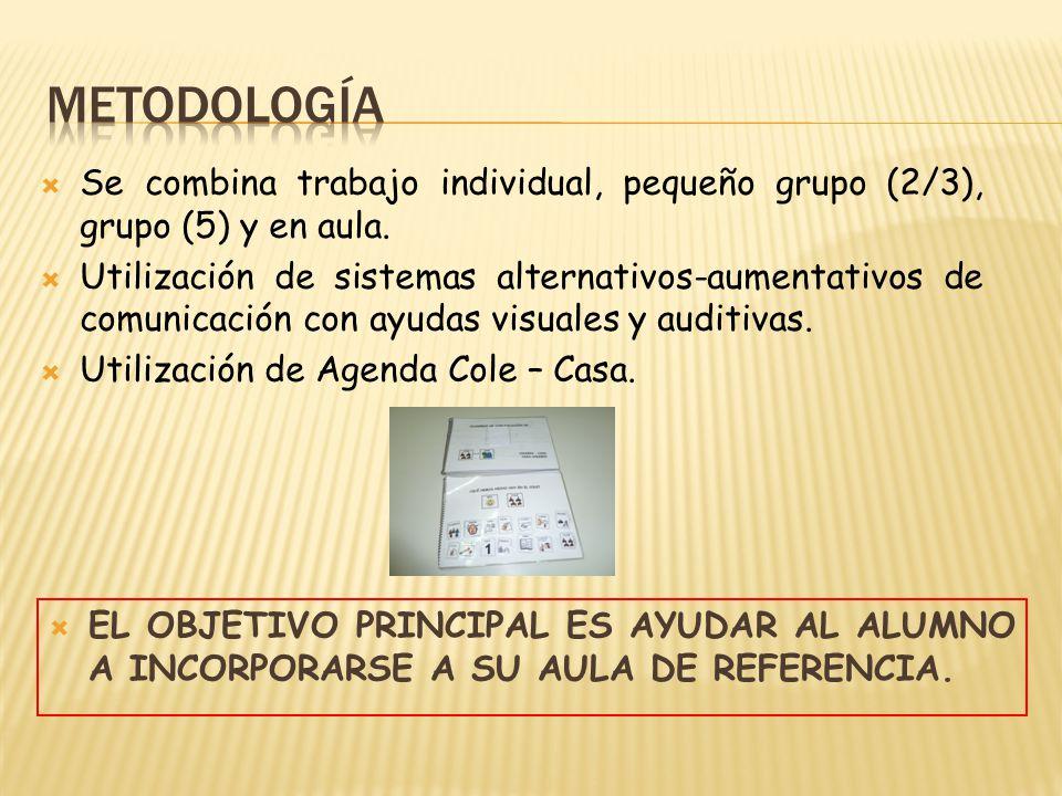 METODOLOGÍA Se combina trabajo individual, pequeño grupo (2/3), grupo (5) y en aula.