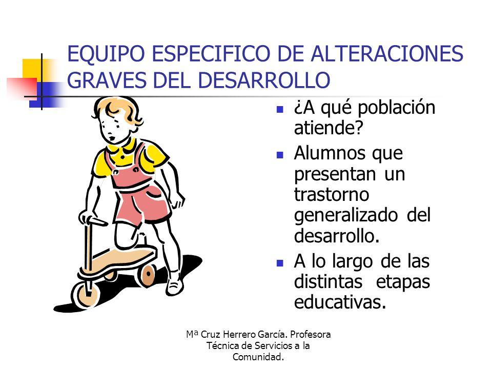 EQUIPO ESPECIFICO DE ALTERACIONES GRAVES DEL DESARROLLO