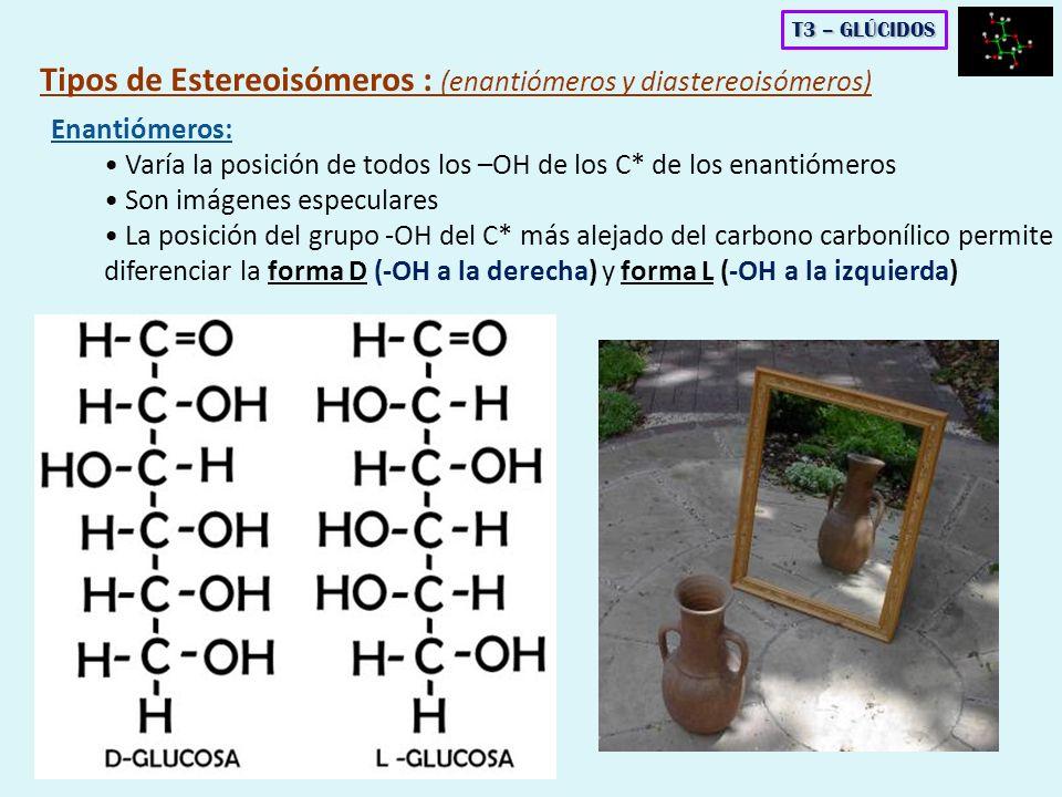 Tipos de Estereoisómeros : (enantiómeros y diastereoisómeros)