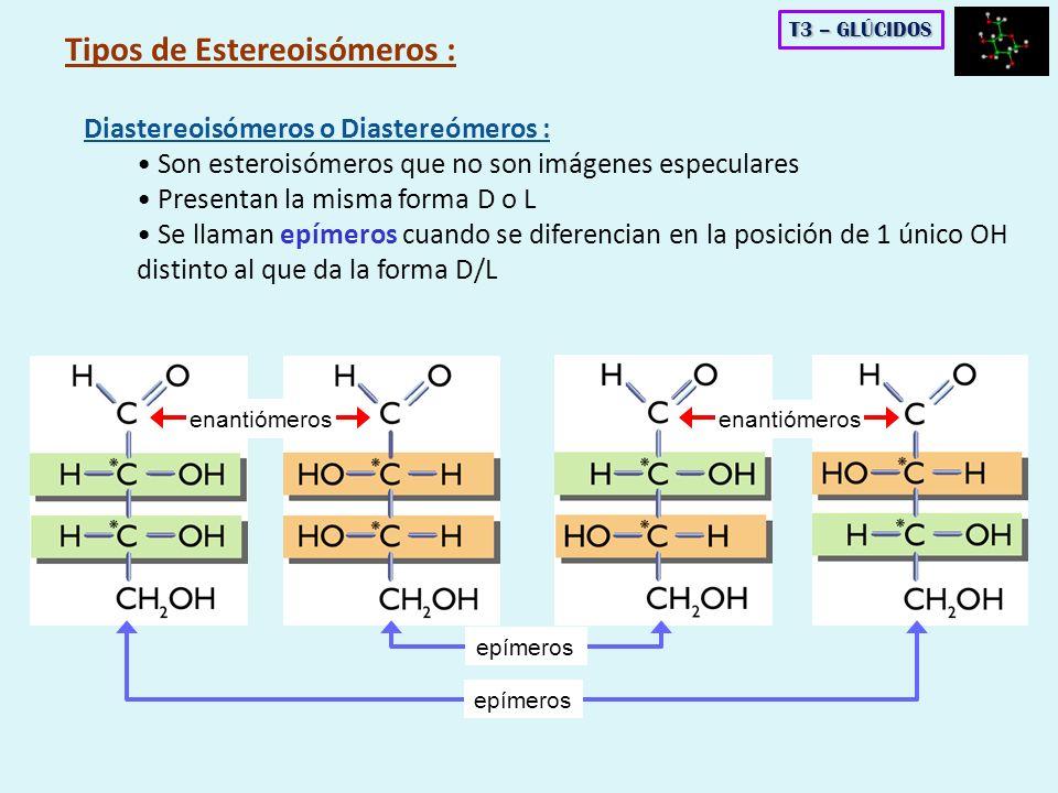 Tipos de Estereoisómeros :