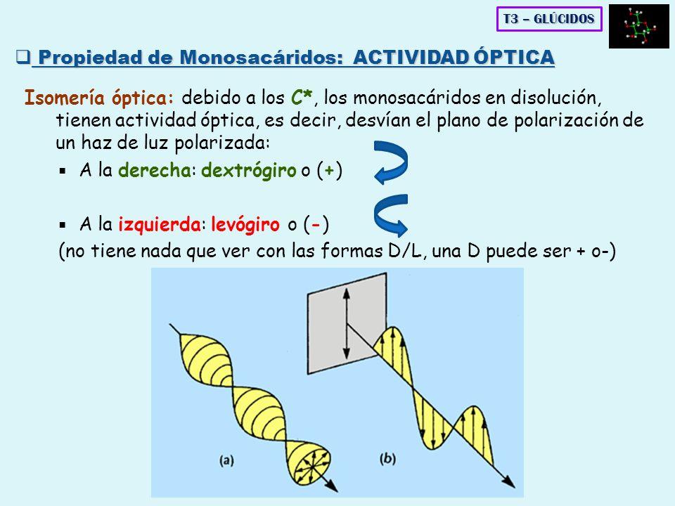 Propiedad de Monosacáridos: ACTIVIDAD ÓPTICA