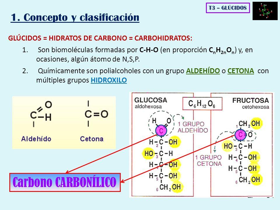 Carbono CARBONÍLICO 1. Concepto y clasificación