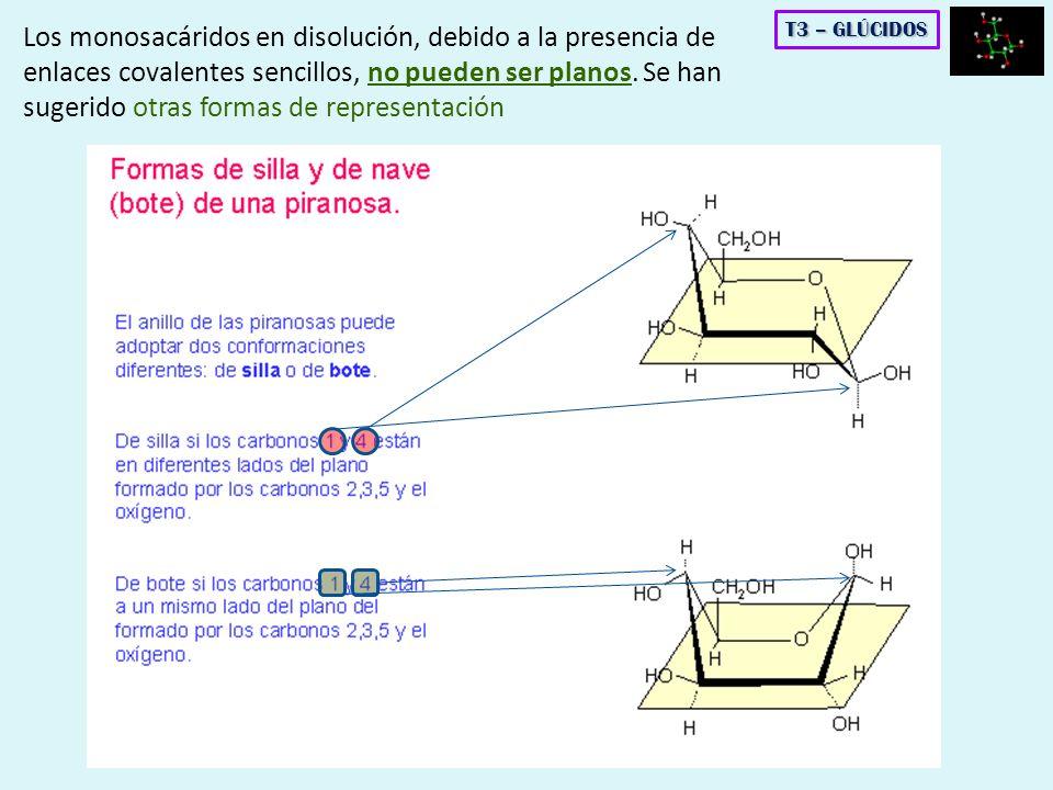 Los monosacáridos en disolución, debido a la presencia de enlaces covalentes sencillos, no pueden ser planos. Se han sugerido otras formas de representación