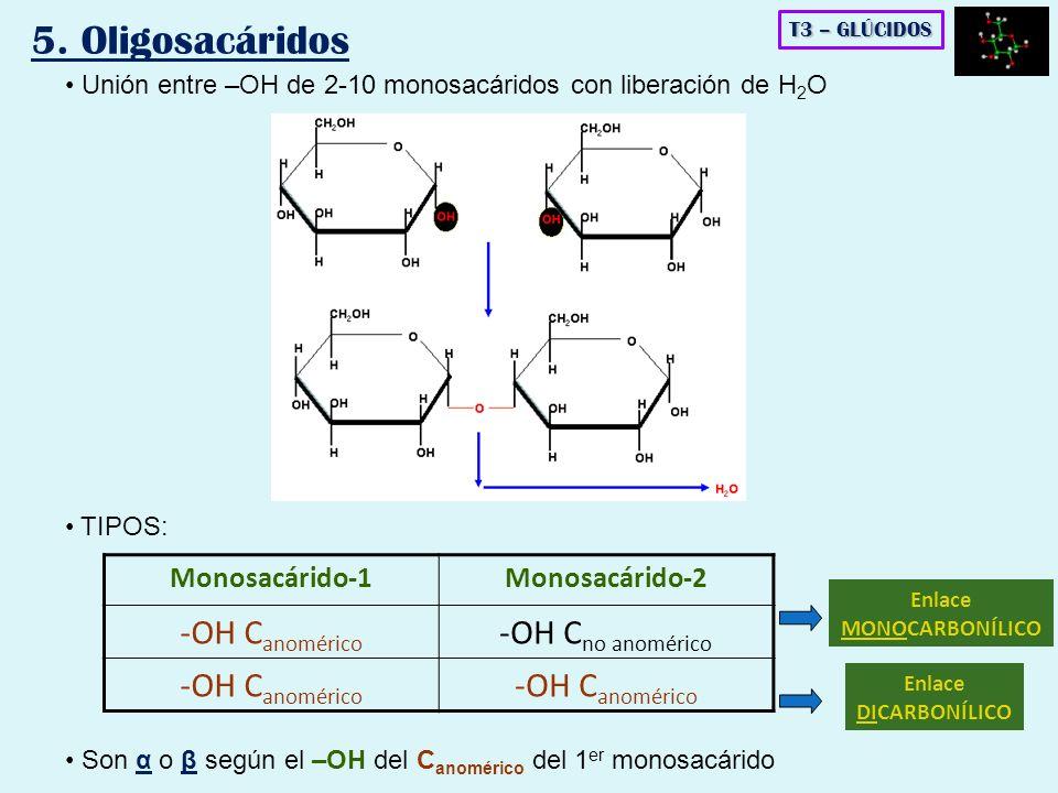 5. Oligosacáridos -OH Canomérico -OH Cno anomérico Monosacárido-1
