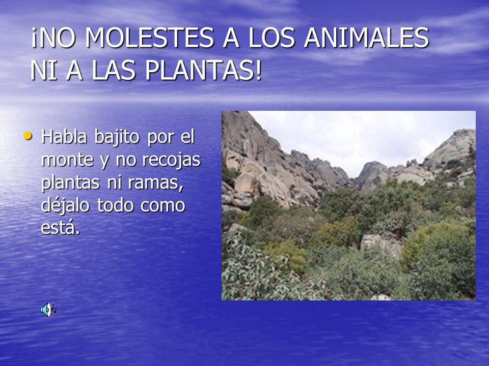 ¡NO MOLESTES A LOS ANIMALES NI A LAS PLANTAS!