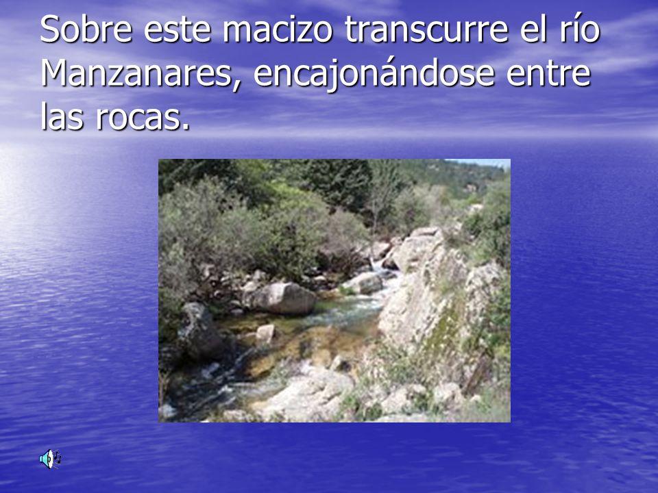 Sobre este macizo transcurre el río Manzanares, encajonándose entre las rocas.