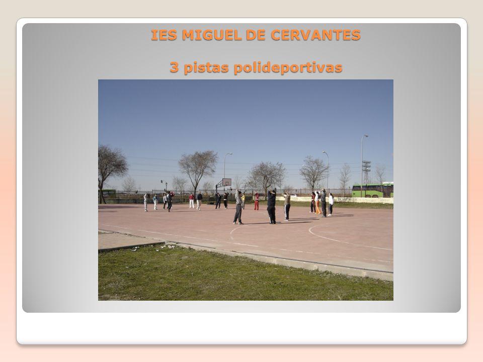 IES MIGUEL DE CERVANTES 3 pistas polideportivas