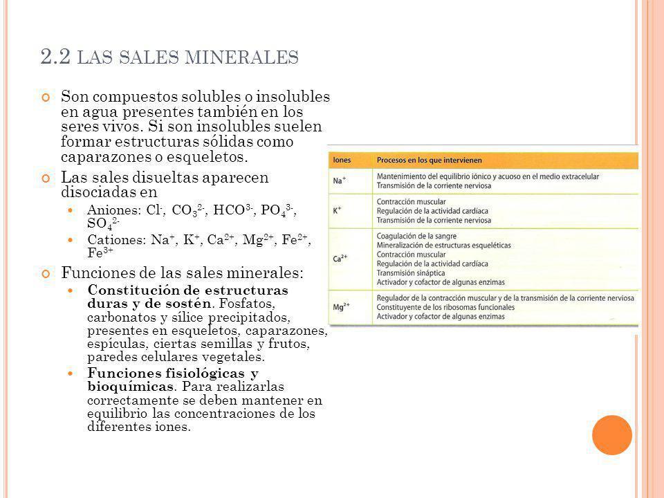 2.2 las sales minerales