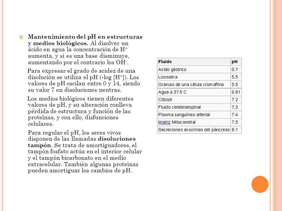 Mantenimiento del pH en estructuras y medios biológicos