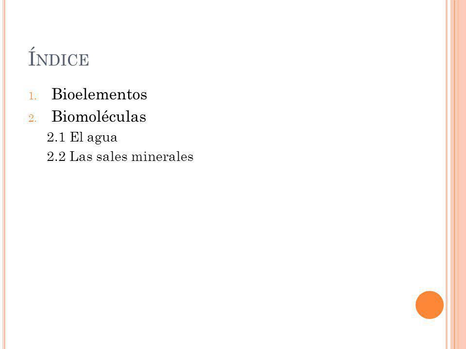 Índice Bioelementos Biomoléculas 2.1 El agua 2.2 Las sales minerales