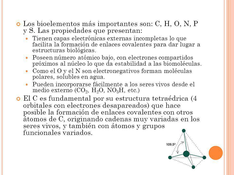 Los bioelementos más importantes son: C, H, O, N, P y S