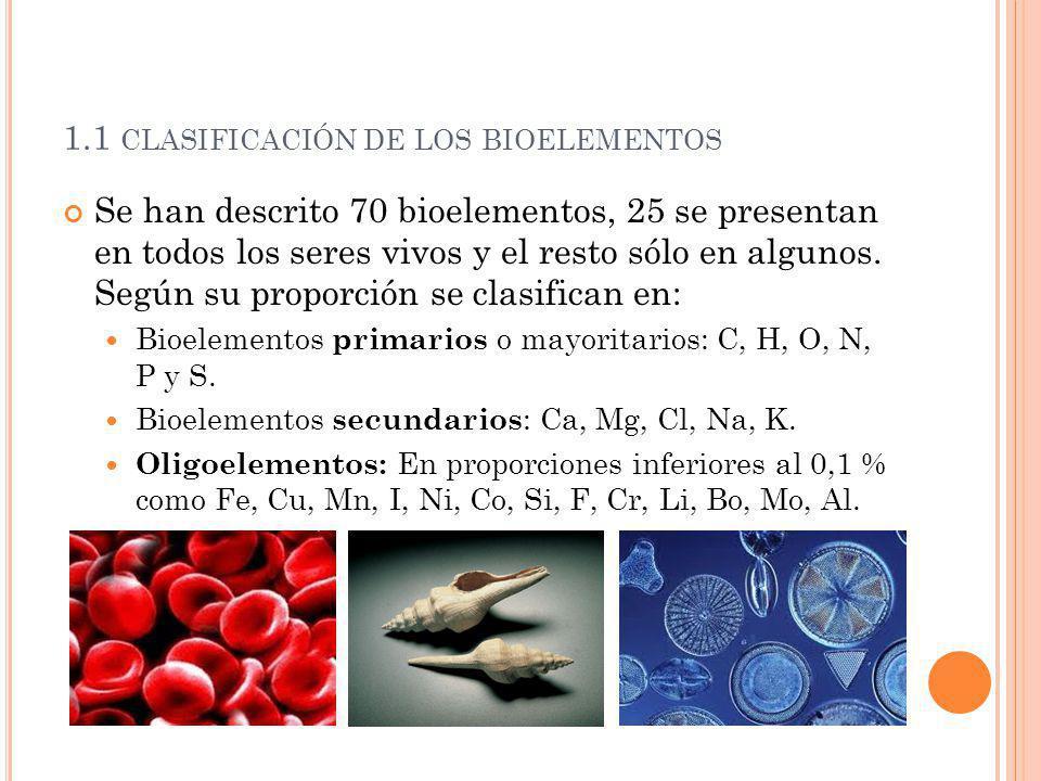 1.1 clasificación de los bioelementos