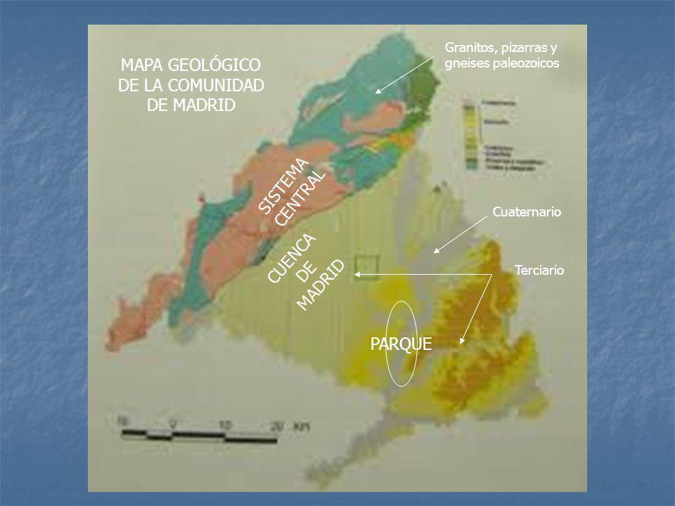 MAPA GEOLÓGICO DE LA COMUNIDAD DE MADRID