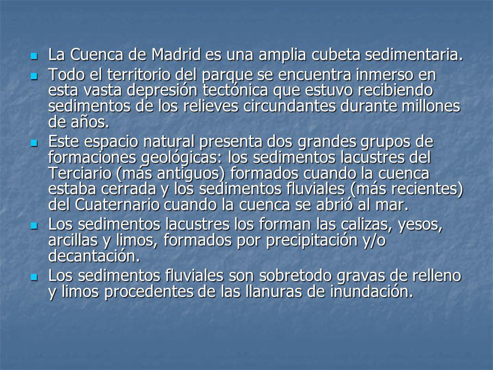 La Cuenca de Madrid es una amplia cubeta sedimentaria.