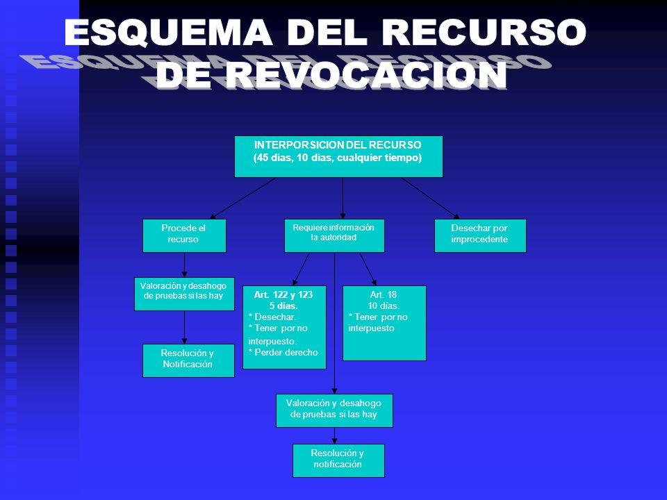 INTERPORSICION DEL RECURSO (45 días, 10 días, cualquier tiempo)