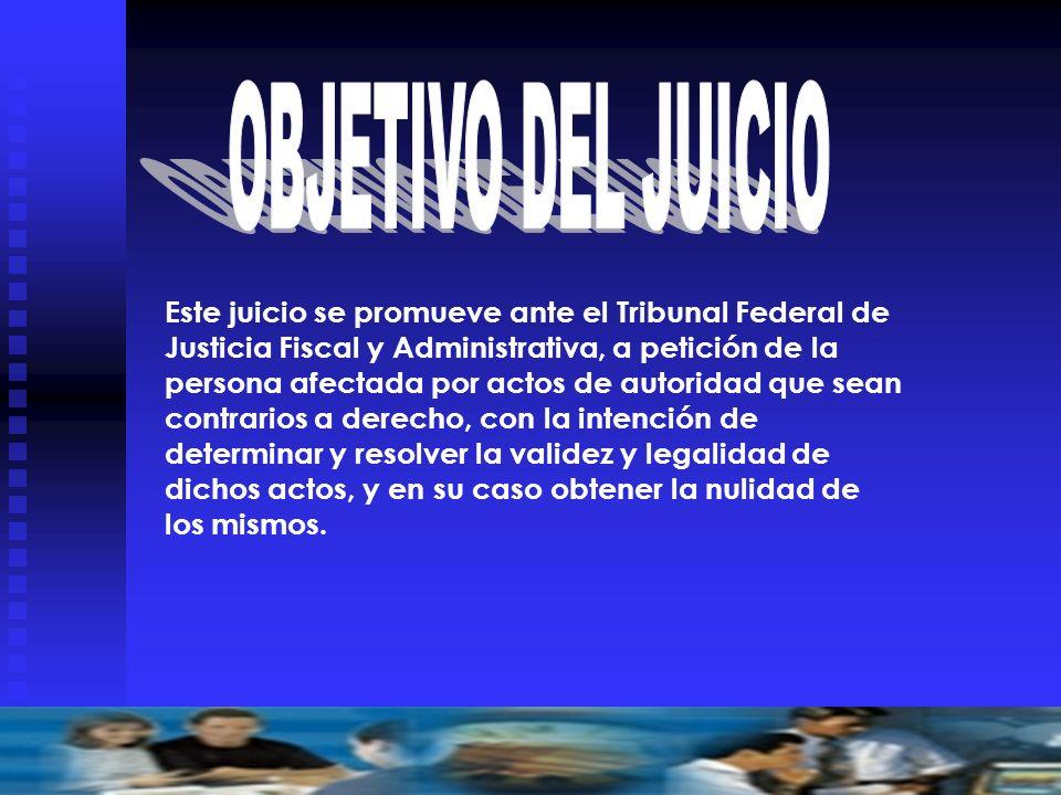 OBJETIVO DEL JUICIO