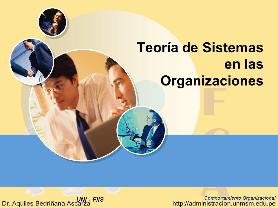 Teoría de Sistemas en las Organizaciones