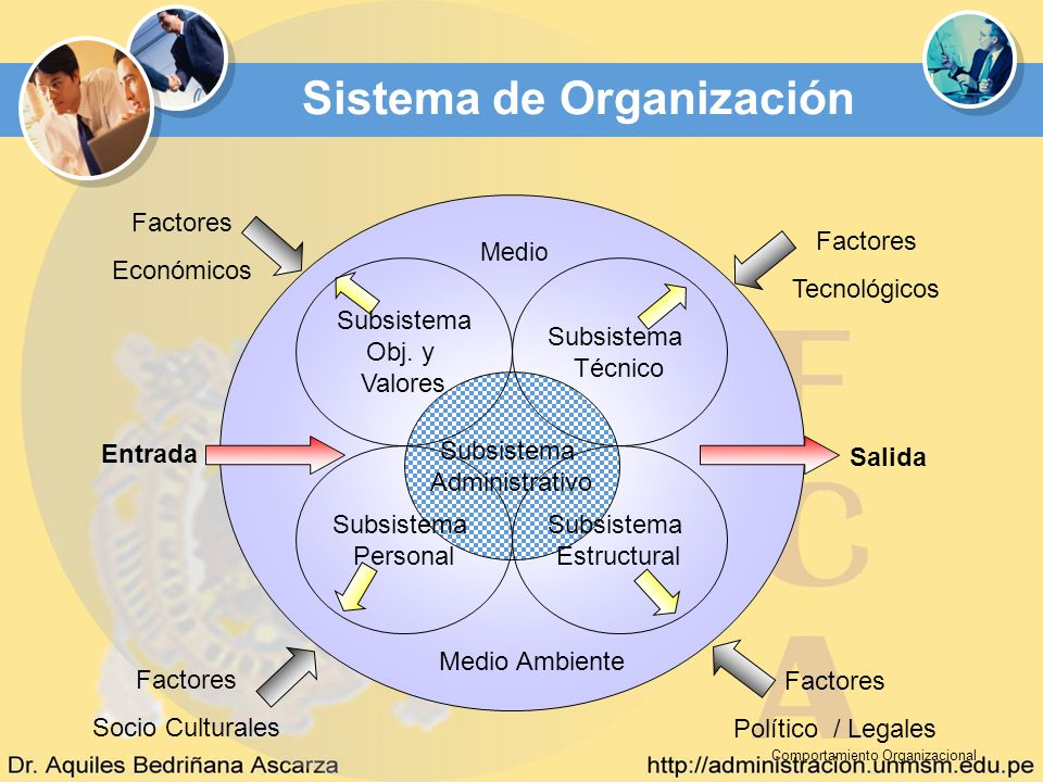 Sistema de Organización