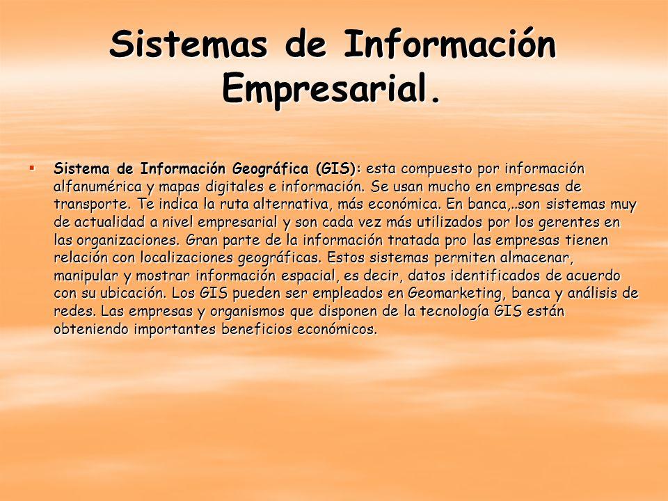 Sistemas de Información Empresarial.