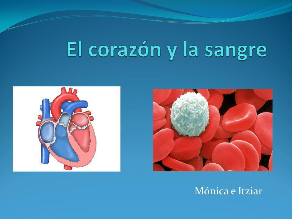 El corazón y la sangre Mónica e Itziar
