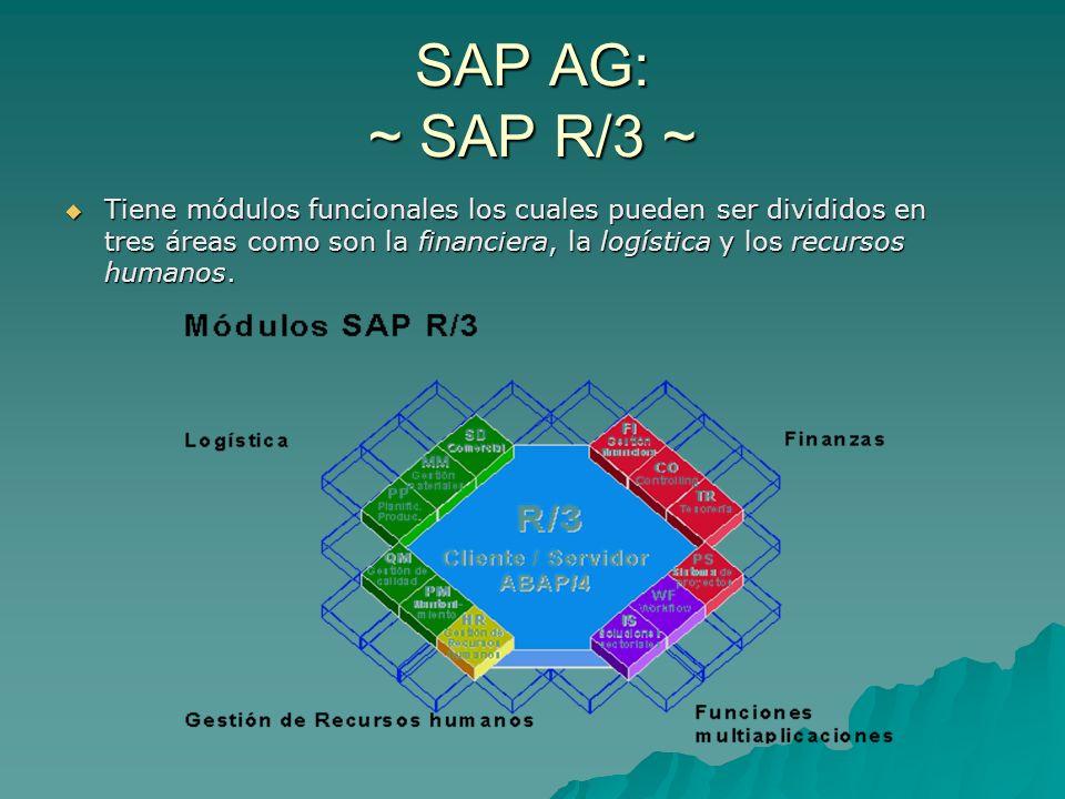 SAP AG: ~ SAP R/3 ~