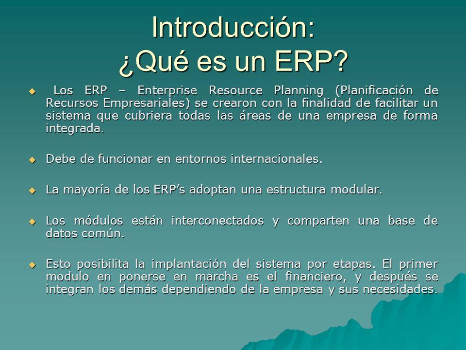 Introducción: ¿Qué es un ERP