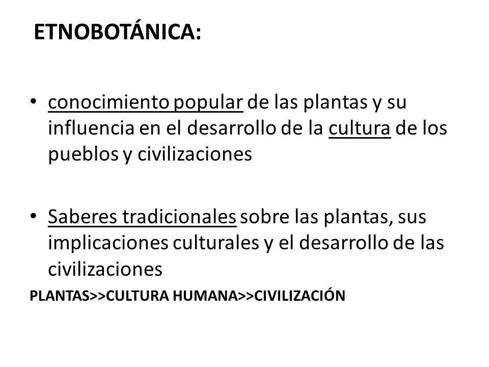 ETNOBOTÁNICA: conocimiento popular de las plantas y su influencia en el desarrollo de la cultura de los pueblos y civilizaciones.