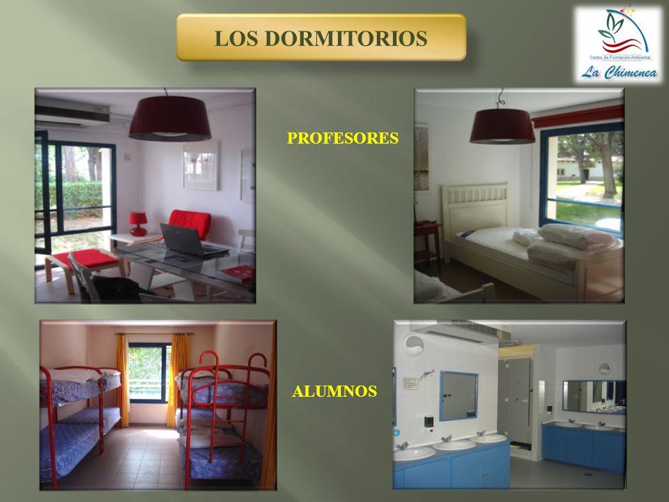 LOS DORMITORIOS PROFESORES ALUMNOS