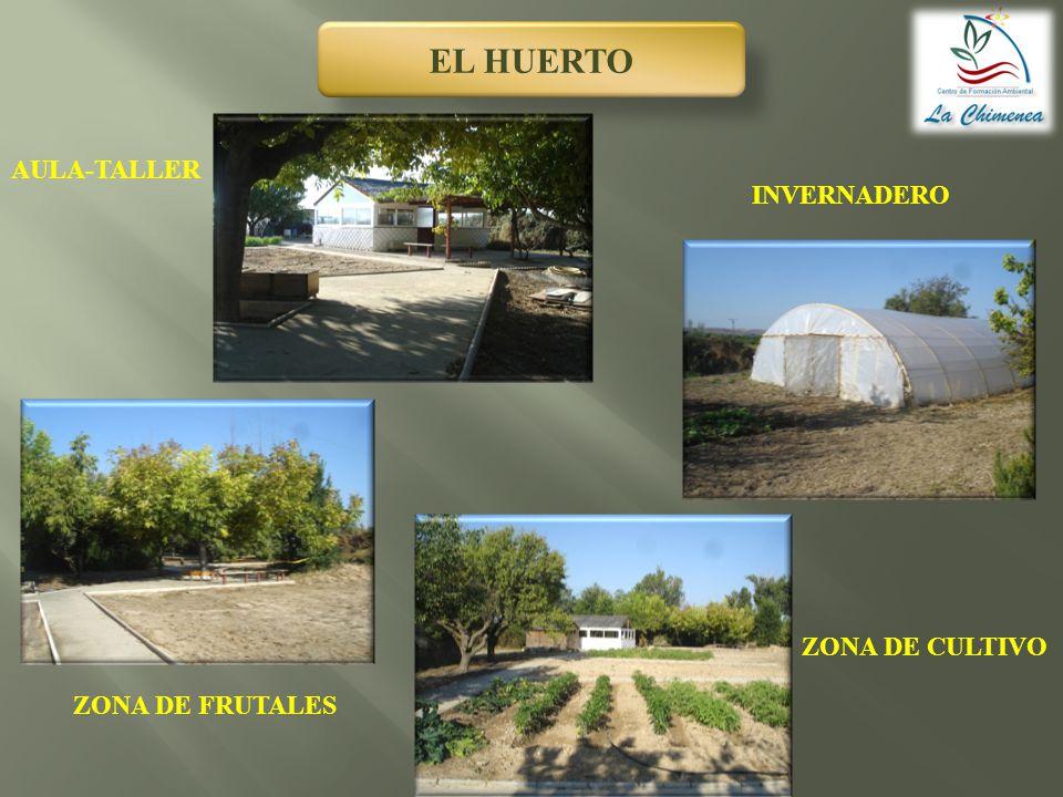 EL HUERTO AULA-TALLER INVERNADERO ZONA DE CULTIVO ZONA DE FRUTALES
