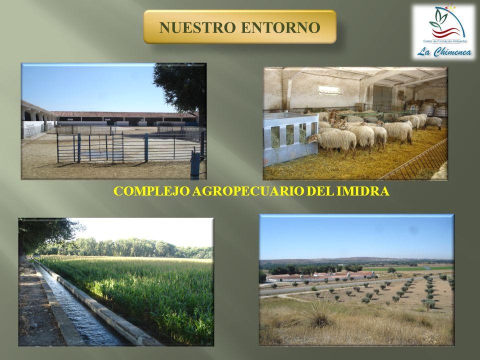 COMPLEJO AGROPECUARIO DEL IMIDRA
